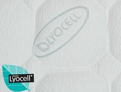 LYOCEL -2.jpg
