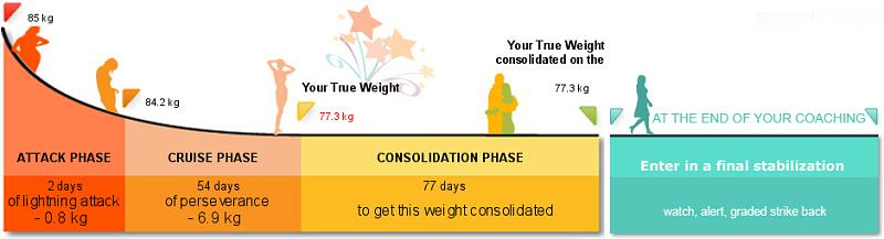 Dukanova dieta se dělí celkově na 4 fáze, které si žádají individuální přístup.